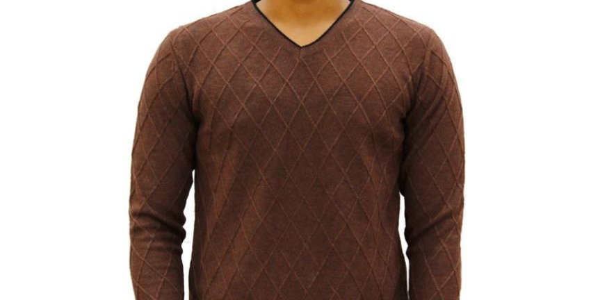 Maxexcel Brown V Neck Sweater