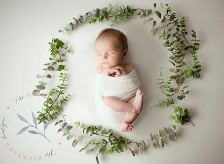 Baby Boy Newborn Photography, Lansdale, PA