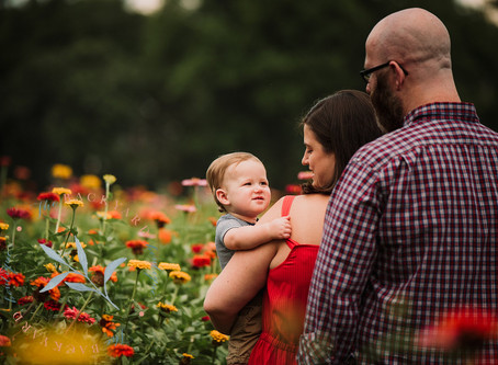Wildflower Mini Sessions, Plymouth Meeting PA