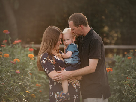 Maternity Photography, Montgomery County PA Wildflower Field