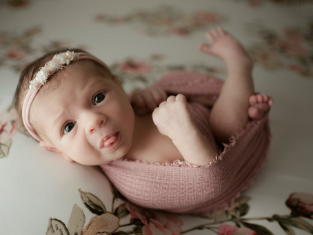Doylestown, PA Newborn Photos