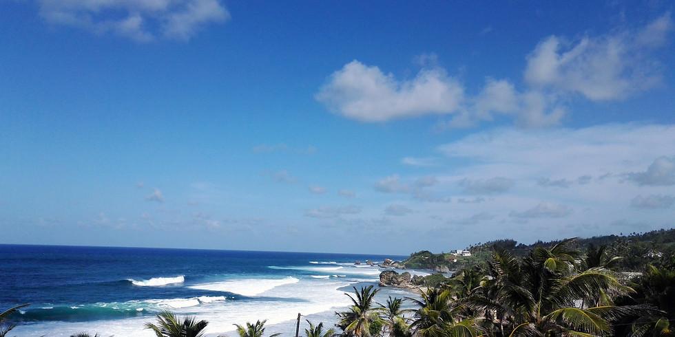 restore&revive CARIBEAN-YOGA-RETREAT