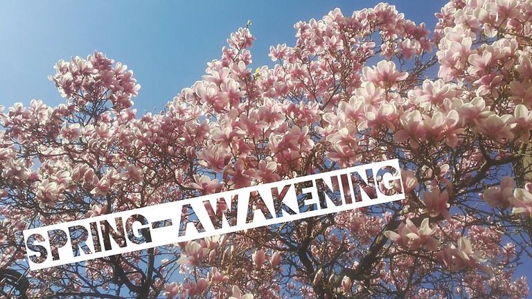 SPRING-AWAKENING-immersion