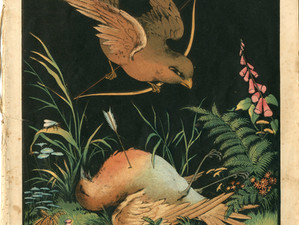 Cock Robin Through Time #1: Nelson's Oil Colour Picture Books for the Nursery (1864)