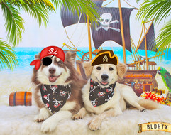 Buddy and Cali (Agosto's Pirate Party).jpg