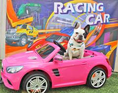 Lola Back (Leo's Cars B-Day Party).jpg