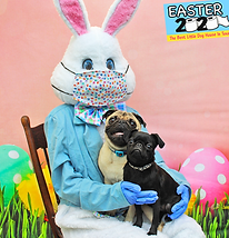 Sprout & Diggle (Easter 2020).png