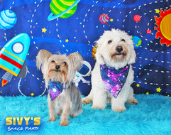 Muffin and Bodhi (Sivy's Space Party).jpg