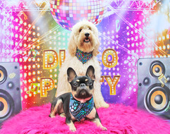 Hughie and Rosie (Dixie's Disco Party).jpg