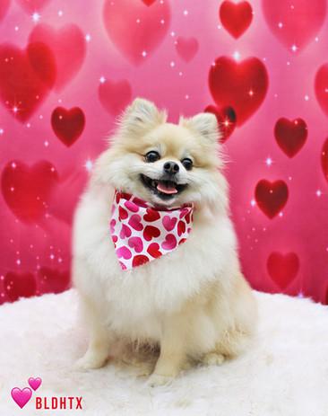 Cash Daywalt Valentine's Photo.jpg