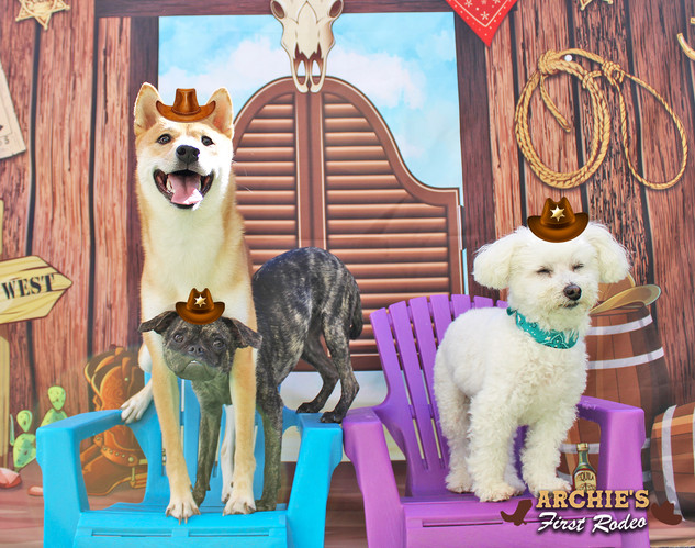 Saki, Tillie and Boo (Archie's First Rod