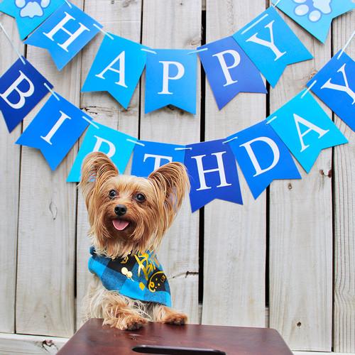 3 Bear Birthday.jpg