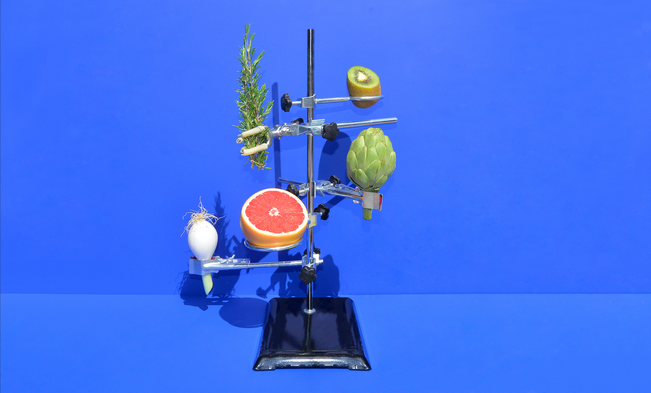 cedecarmona-frutasolivar7.png