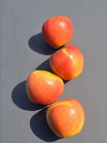 cedecarmona-frutasolivar21.png