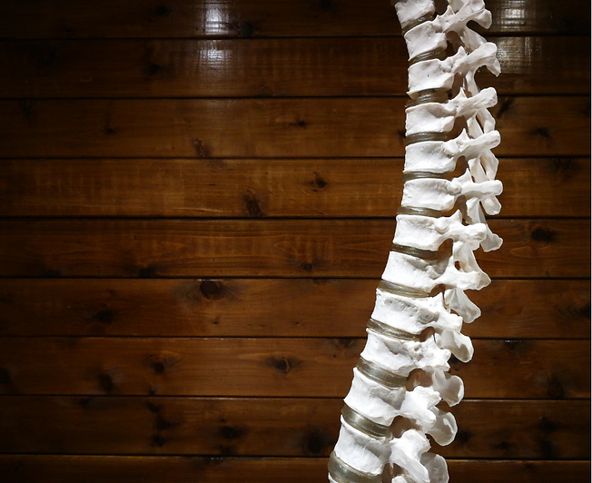 osteopathy.png
