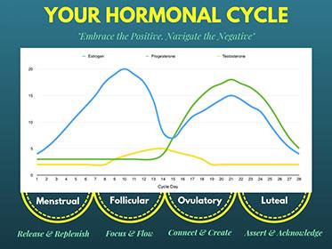 Navigating your Cycle Week By Week
