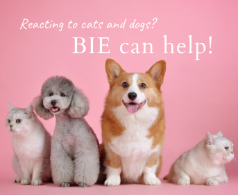 Reacting to cats and dogs? BIE can help!