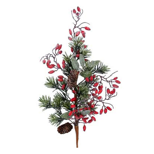 Fir Branch with Red Rosehips