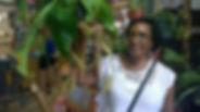 Tropical Pitcher Plants.jpg