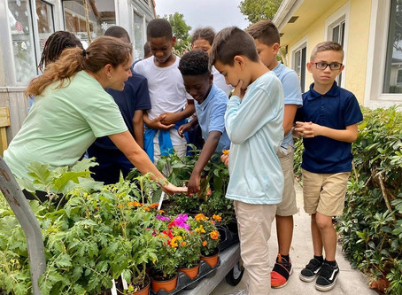 "Learning Garden Beds unveiled on ""KIDS in Distress"" Campus"