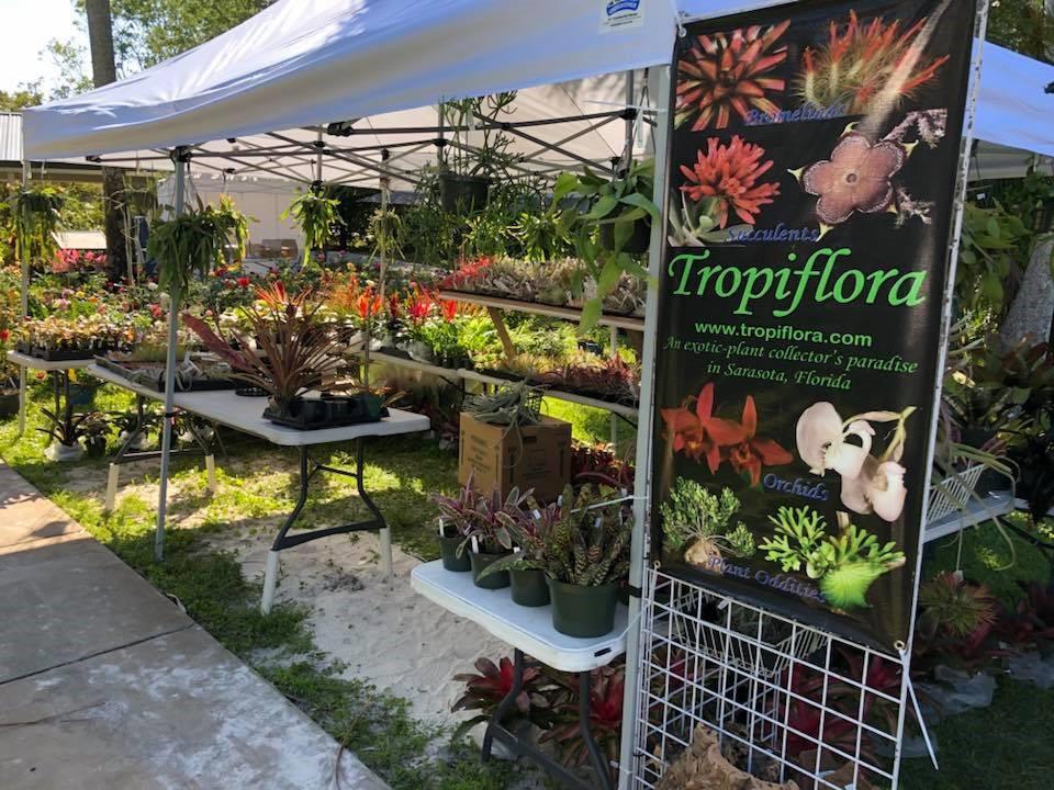Plant Fair Pics 2.jpg