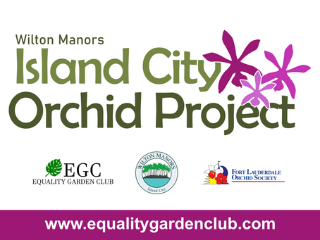 Island City Orchid Project