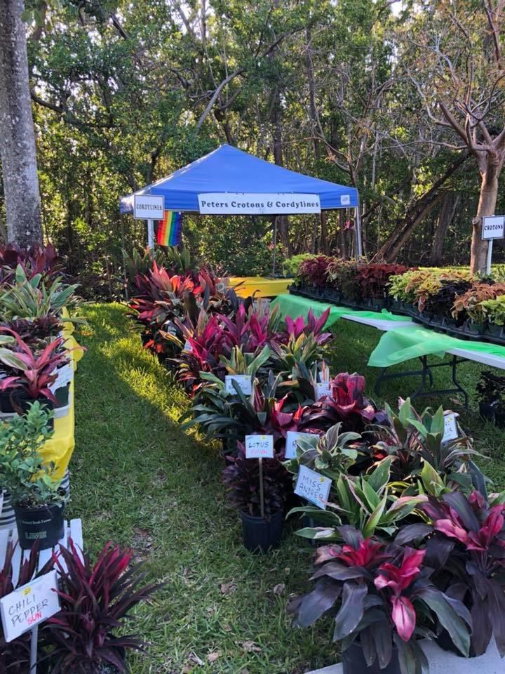 plant fair pic 3.jpg