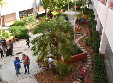 Local Elementary School & Garden Club Create A Butterfly Garden