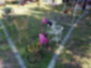 Gardens Gone Wire.jpg
