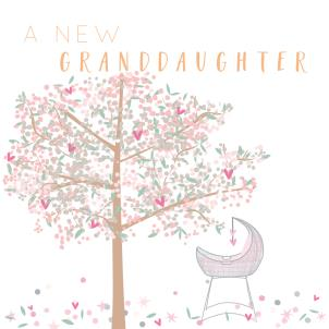 Belly Button a New Granddaughter Card