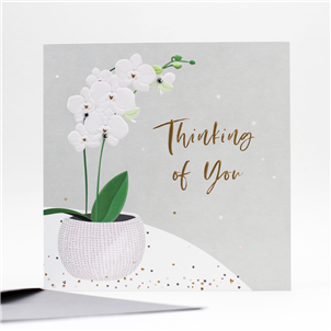 Belly Button Thinking of You Card