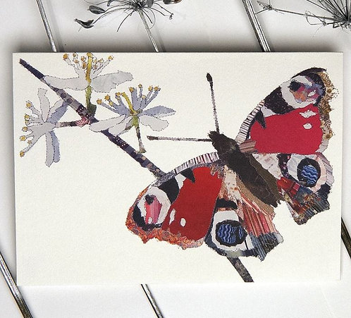 Catherine Kleeli - Butterfly