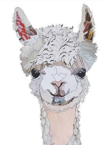 Catherine Kleeli - Llama