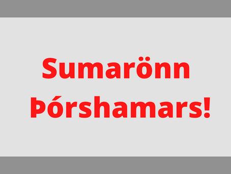 Sumarönn og dagskrá fyrir komandi vikur! / Plans for the summer