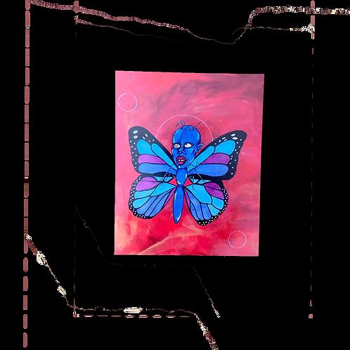 "8.5""x11"" 730t Butterfly Print"