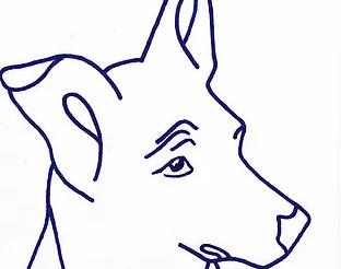 Jubiläumsfeier Stiftung vergessene Hunde