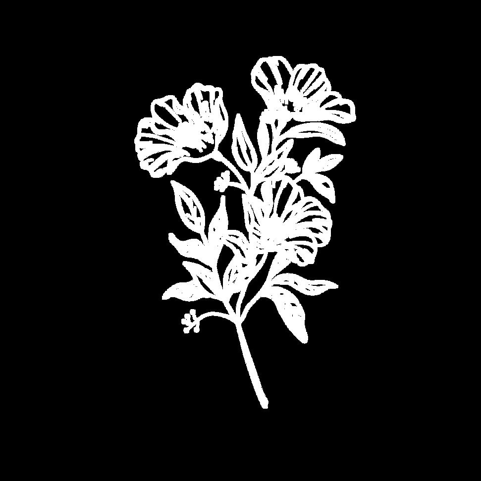 Untitled design-17.png