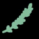 Foliage CMYK 300dpi-03.png
