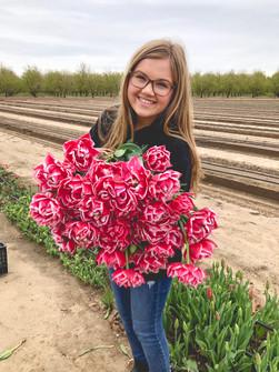 Tulip Armload