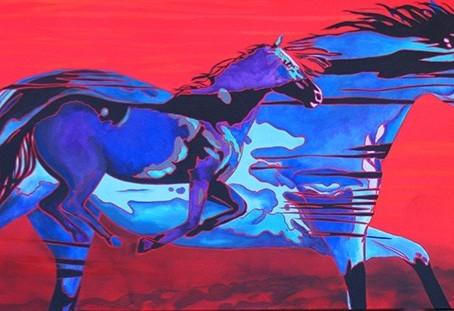 You can't bullsh#t a horse!