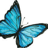 Blue Butterfly 8.png