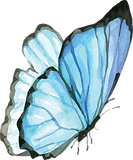 Blue Butterfly 2.png