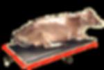 Polytag Cow Mats, Rubber Cow Mats Manufacturer