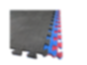 Gym Interlockng Mats