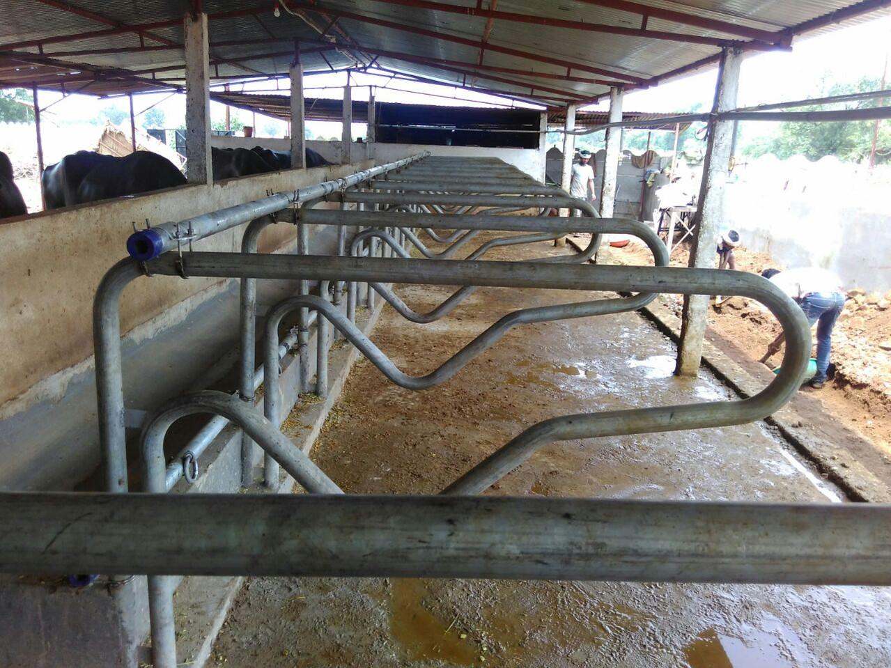 Comfor Cow Mats