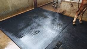 What are cow mats used for?