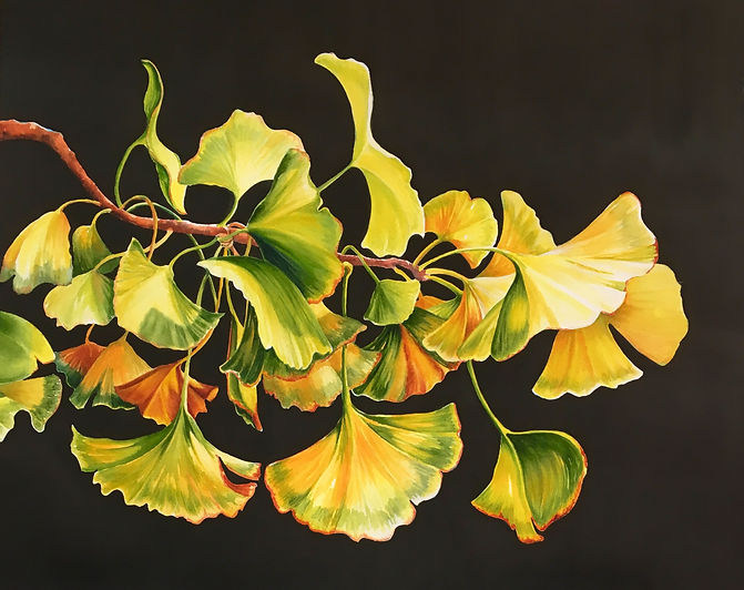 GinkoesGeri M. Davis Watercolor $675.jpg