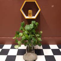 Eat Thou Honey, 2018 installation detail - hexagonal wooden shelf, honey jar from MOXIE (meaningful opportunities crossing into employment), glass vase, water, kawakawa