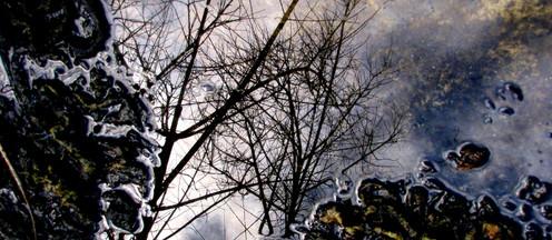Reflection, 2010 Photo, Port Albert Quarry