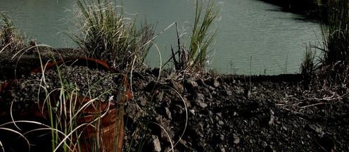 Quarry Lake, 2010 Photograph of Port Albert Quarry dam, Rodney District